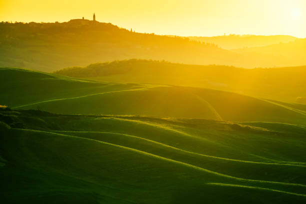Waves hills, rolling hills, minimalistic landscape Waves hills, rolling hills, minimalistic landscape with green fields in the Tuscany. Italy pienza stock pictures, royalty-free photos & images