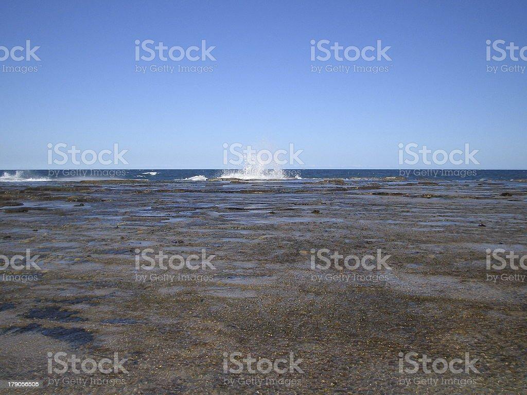 Waves royalty-free stock photo