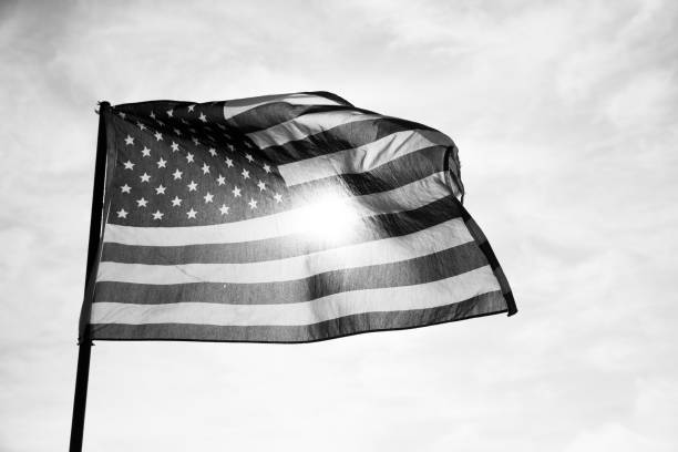 Waving American Flag in Black and White stock photo
