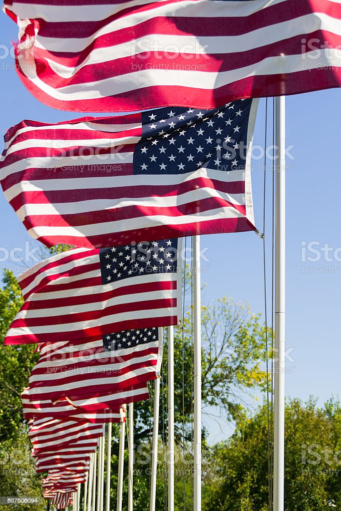 Waving American Flags. stock photo