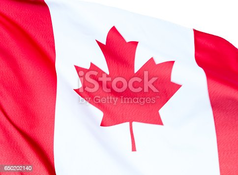 istock Waving Canadian flag 650202140