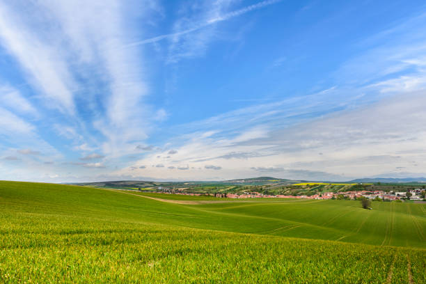 Wavy green field Wavy green field with cloudy blue sky and small village on South Moravia, Czech Republic moravia stock pictures, royalty-free photos & images