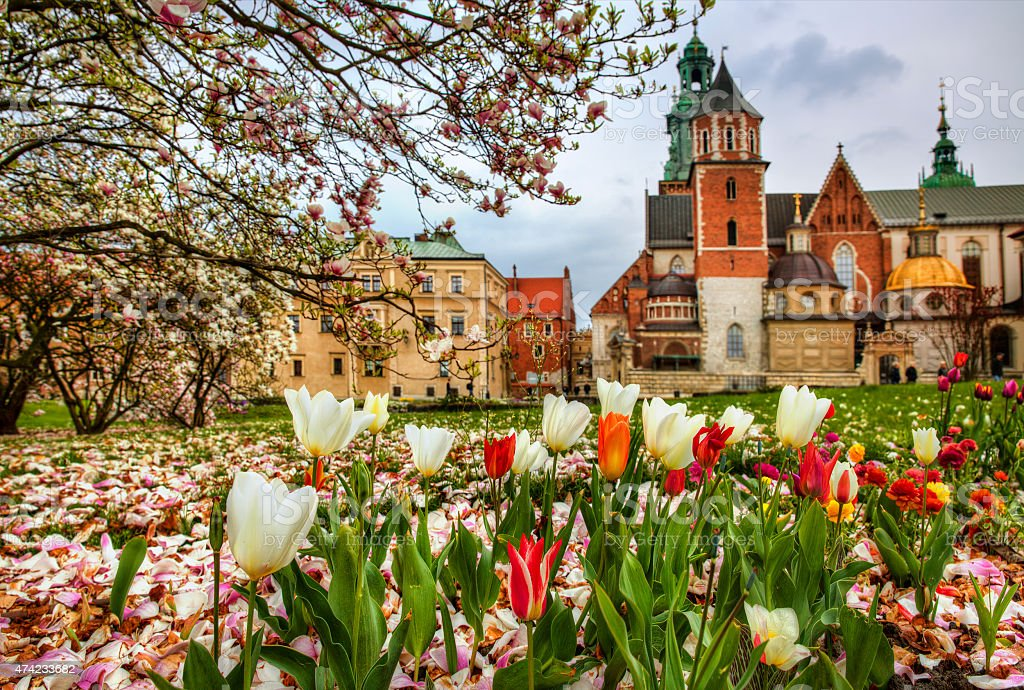 Wawel Hill stock photo