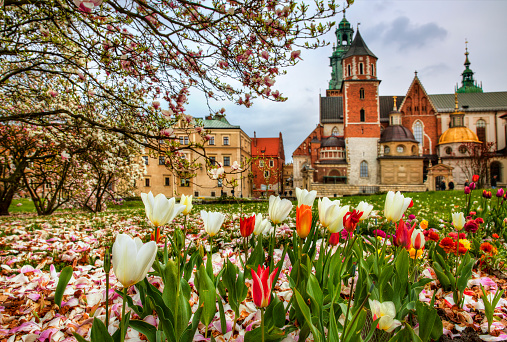 Wawel Hill Stock Photo - Download Image Now