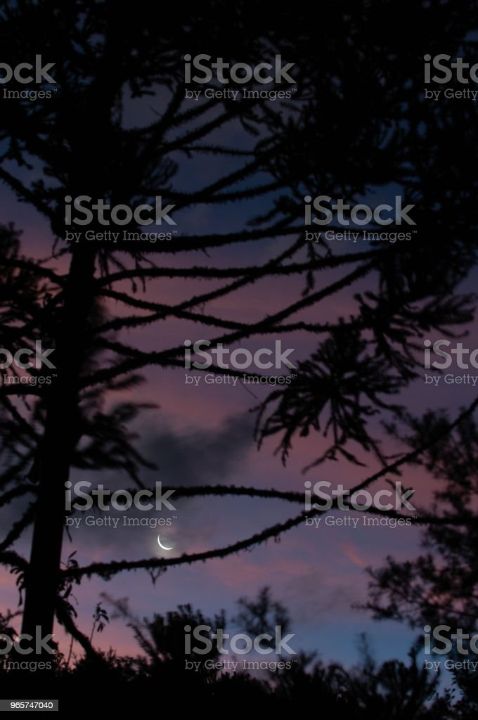 Waxing Crescent - Royalty-free Astronomy Stock Photo