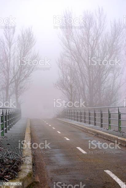 Photo of Way on a bridge with trees in the background, in winter on a foggy day.
