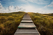 istock Way through the dunes 1199428666