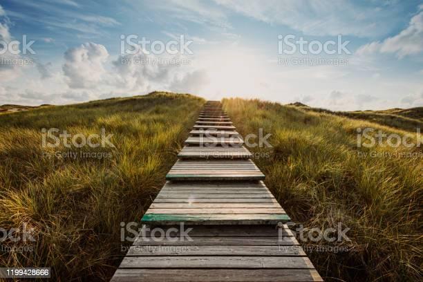 Photo of Way through the dunes