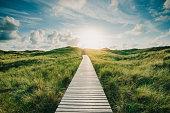 istock Way through the dunes 1200175476