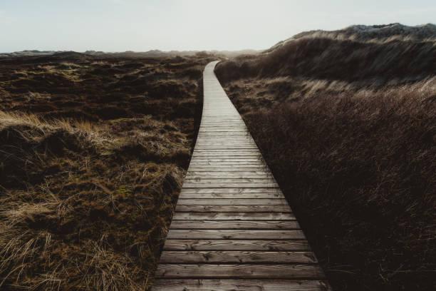 Weg durch die Dünen – Foto