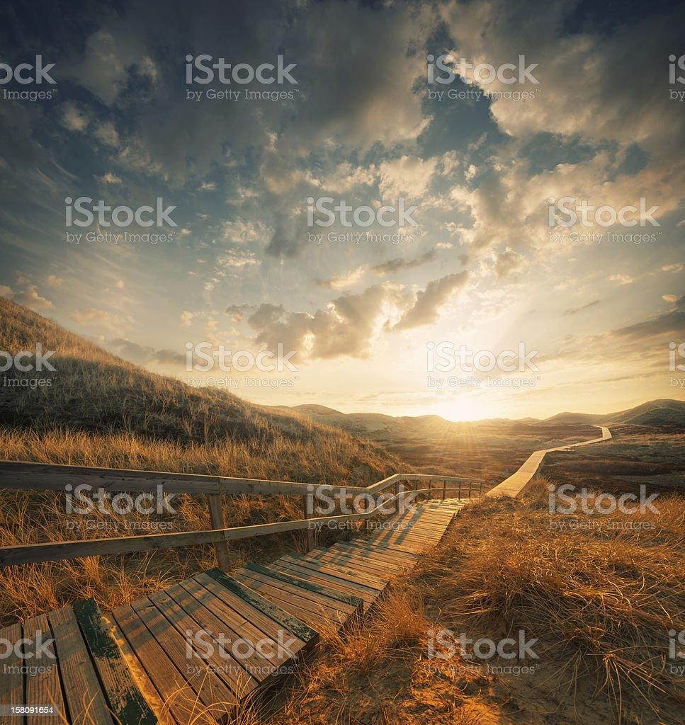 Camino a través de las dunas - foto de stock