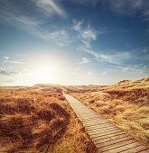 Way through the dunes with a huge sky and a warm sun (XXXL)