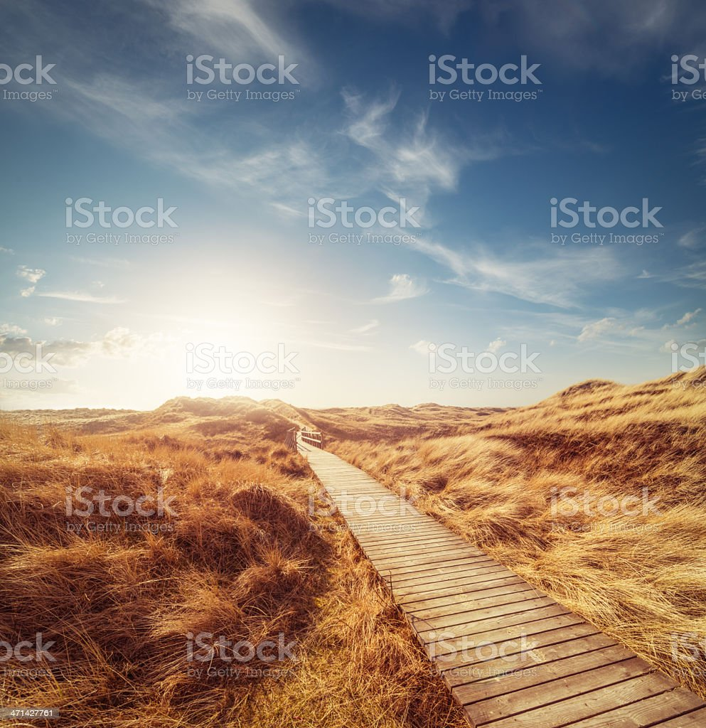 Way through the dunes stock photo