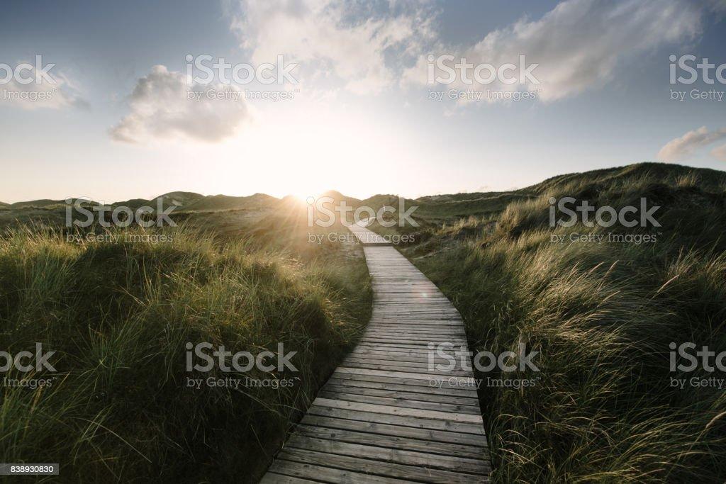 Way through the dunes stock photo