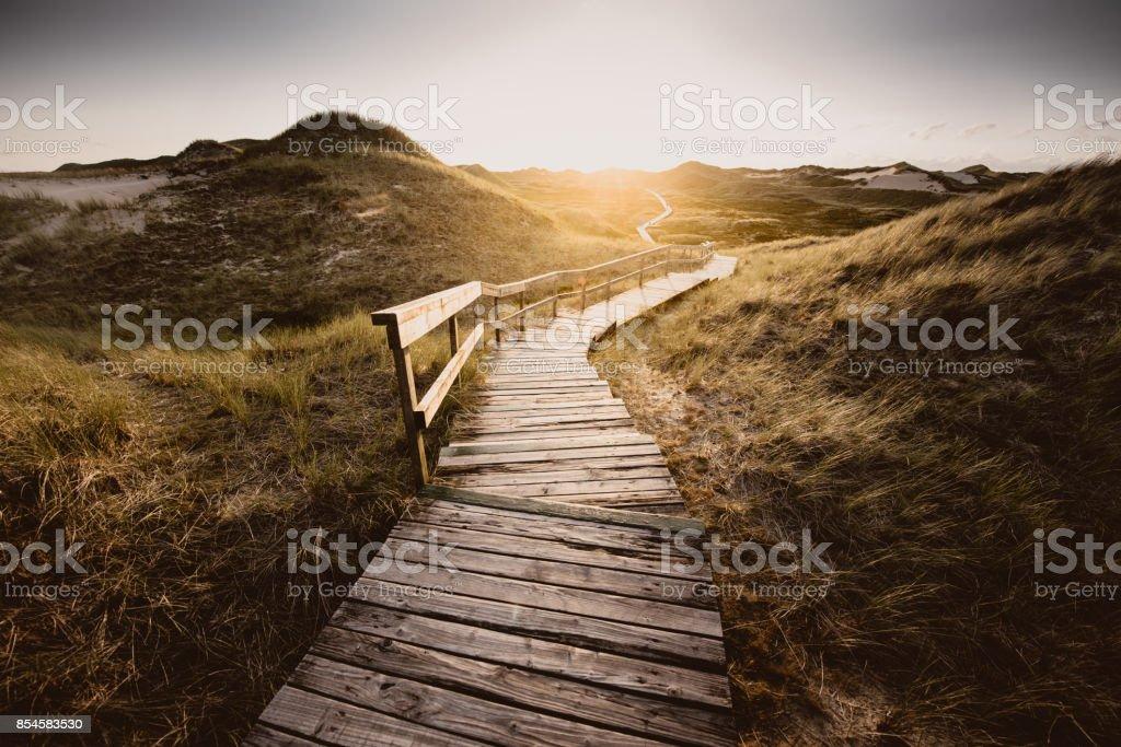 Fahrt durch die Dünen - Lizenzfrei Biegung Stock-Foto