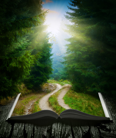 Way through the misty forest on the pages of an open magical book. Majestic landscape. Nature and education concept.