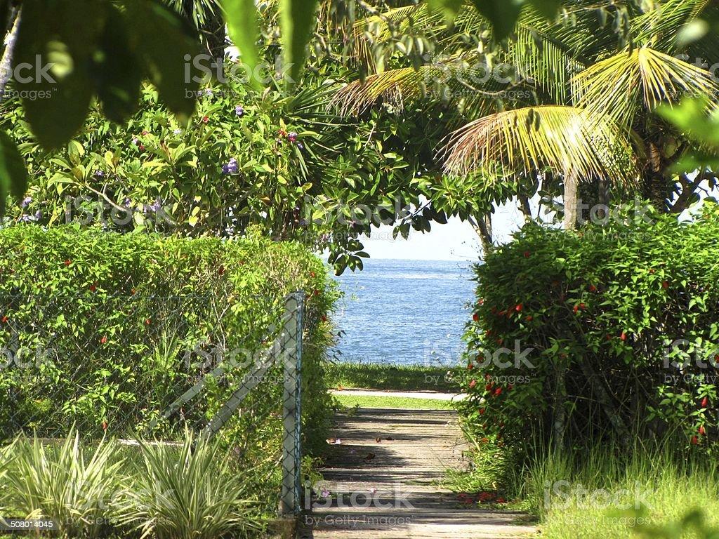 .......caminho para praia stock photo