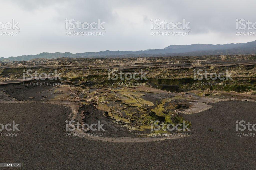 Way to crater Benbow, Ambrym island volcanic caldera, Malampa province-Vanuatu. stock photo