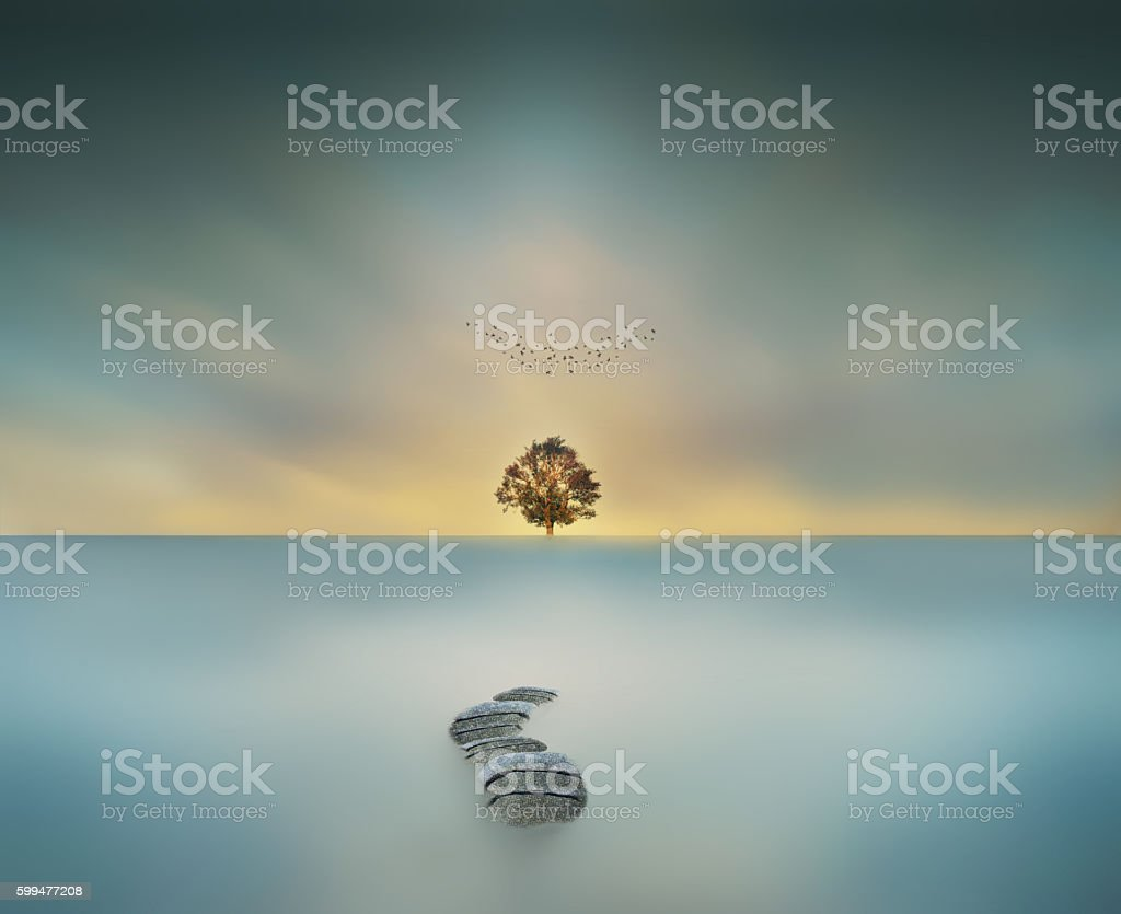 way to heaven magical big tree in waterscape long exposure stock photo
