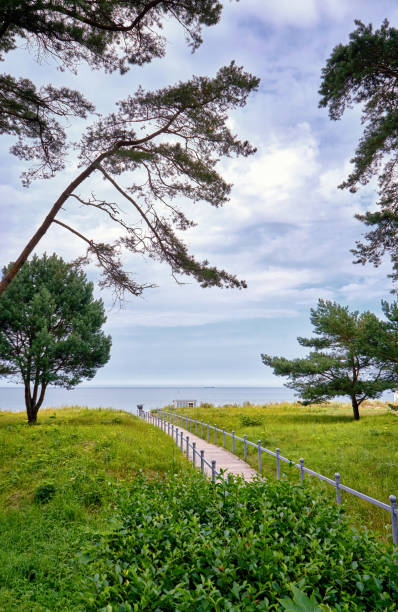 way to the wedding place on the baltic sea beach in binz. registry office on the island of rügen. mecklenburg-vorpommern germany - hymen stock photos and pictures