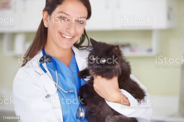 We aim to save your pets life picture id174325204?b=1&k=6&m=174325204&s=612x612&h=hchdc zapr1kquw36zxuzrywashvzfbhw0i1mjdlu6w=