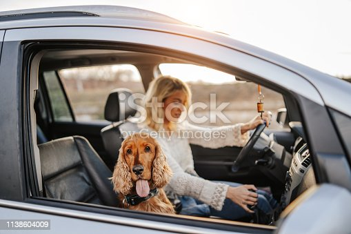 Young woman and her dog in car