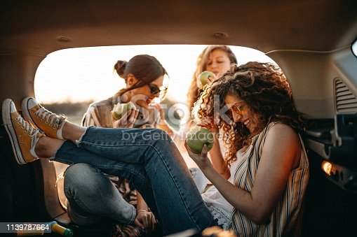 Young friends having fun in trunk of car