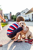Beautiful boy playing with his puppy. He is on the street on sunset with small Labrador puppy.