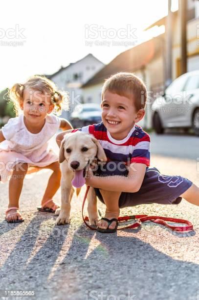 We are best friends picture id1185865565?b=1&k=6&m=1185865565&s=612x612&h=as4  dytuph5tcilidao8p9t m86xrafd3pklyqrl80=
