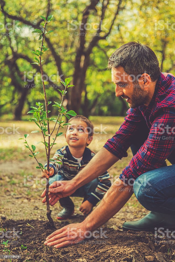We are doing everything together. stock photo