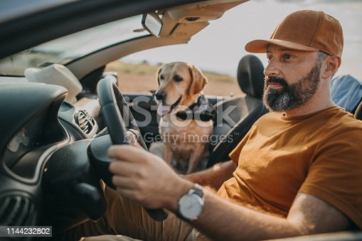 937331052istockphoto We are following your instinct 1144232802