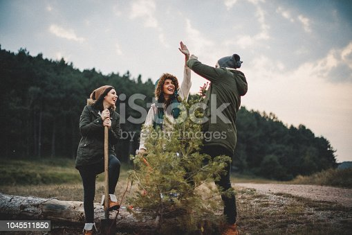 629376126istockphoto We did it and this is our new Christmas tree 1045511850