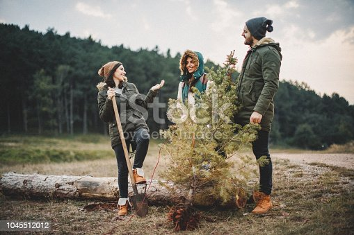 629376126istockphoto We did it and this is our new Christmas tree 1045512012