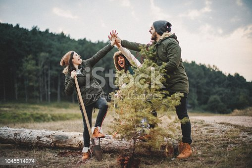 629376126istockphoto We did it and this is our new Christmas tree 1045514274