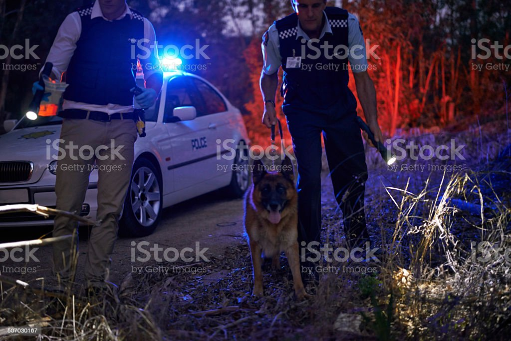 We found it! Shot of two policemen calling for backup Adult Stock Photo