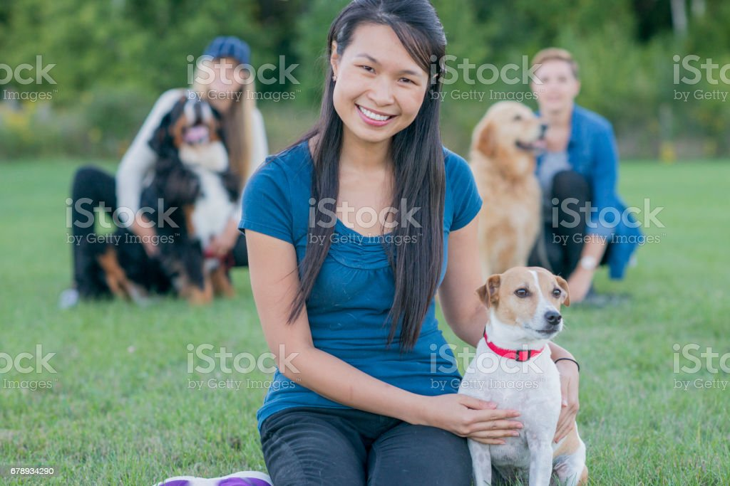 We Love Dog Obedience Class stock photo