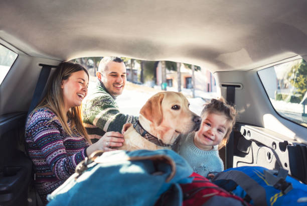 we houden van reizen - family winter holiday stockfoto's en -beelden
