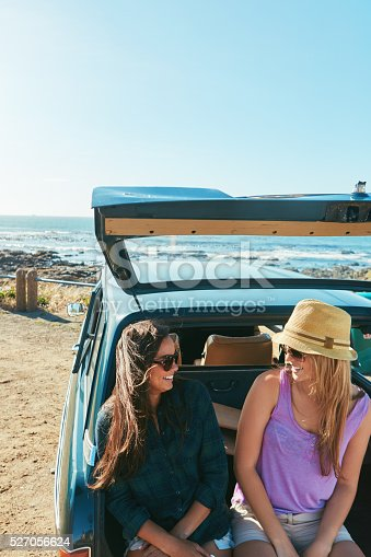 907987862 istock photo We should come here more often! 527056624
