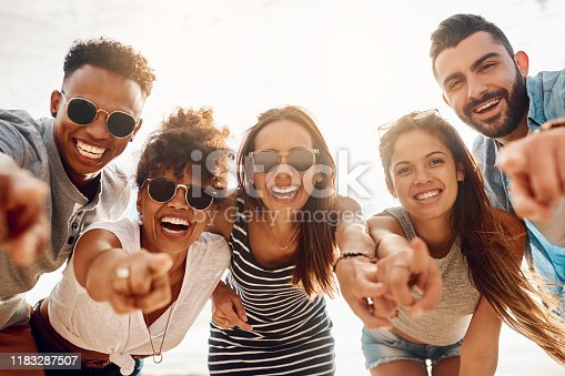 Portrait of a group of happy young friends pointing while enjoying a summer's day at the beach
