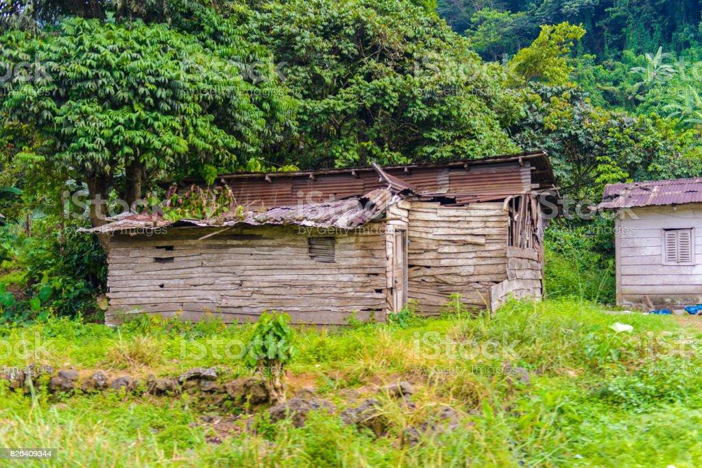 Weak houses in Cameroon jungle stock photo