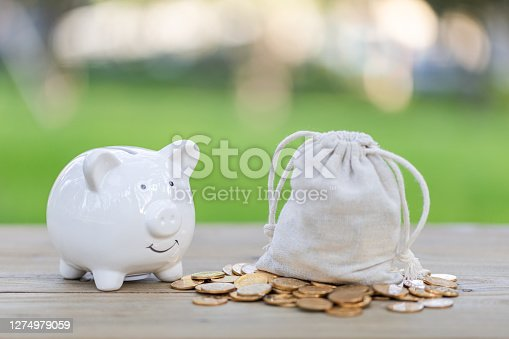 Wealth and piggy bank