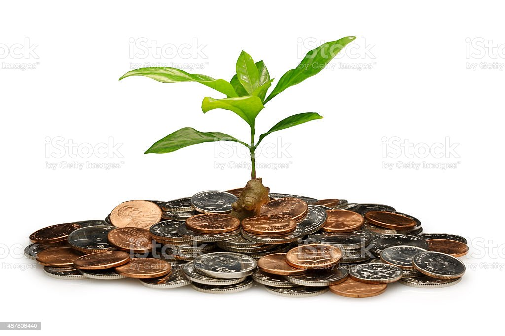 Wealth growth ( with Clipping Path ) stock photo