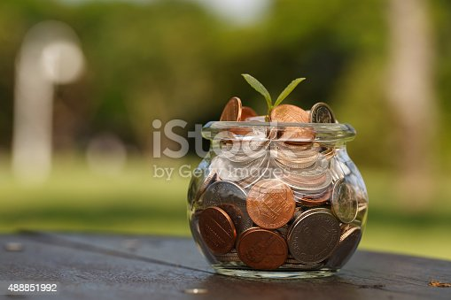 657417590 istock photo Wealth growth 488851992