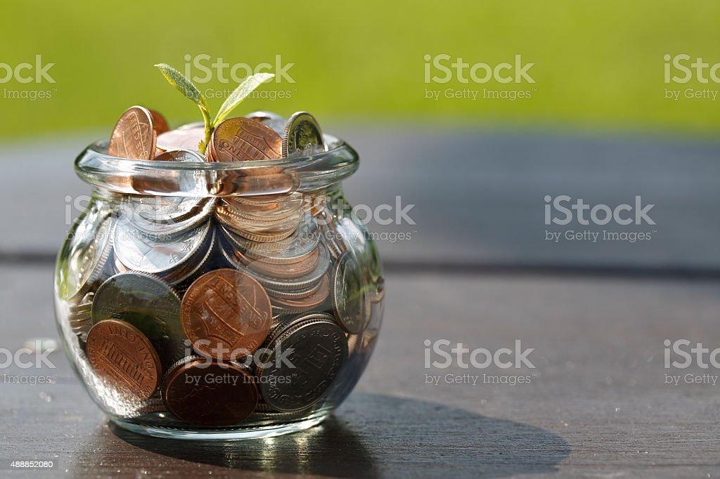 Wealth growth stock photo