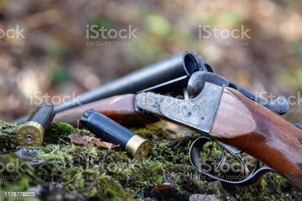 Weapons And Cartridges Lie On A Tree - Fotografias de stock e mais imagens de Adulto
