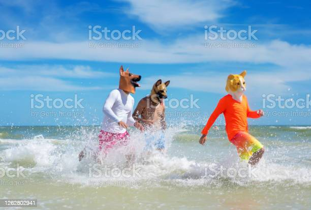 Wearing dogs masks running a teen with cat costume picture id1262802941?b=1&k=6&m=1262802941&s=612x612&h=ws3wyp6fw7hfaqrew dpnhll5cfya2nbrdlgk6zh4o8=