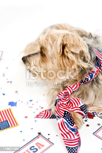 istock Wearing the Red, White and Blue 116621092