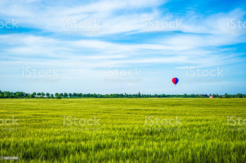 Weath field and hot air balloon in the sky royalty-free stock photo