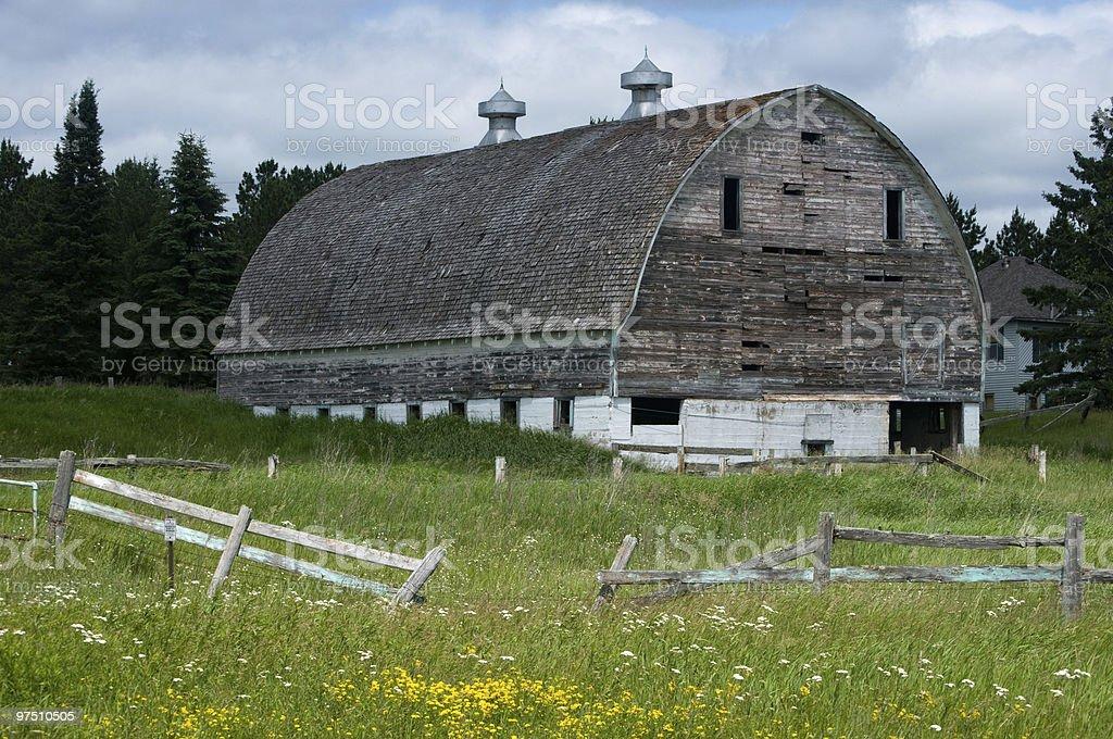 weather beaten white barn stock photo