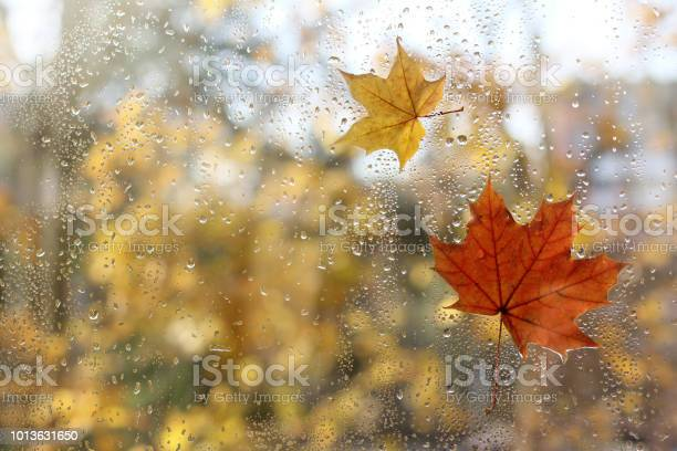 Photo of weather characteristic autumn